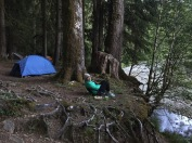 Camping in Olympic National Park